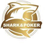 哈尔滨鲨鱼体育运动俱乐部